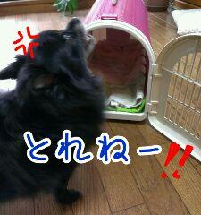 CACG5U21.jpg