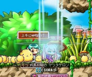 Maple130716_003610.jpg
