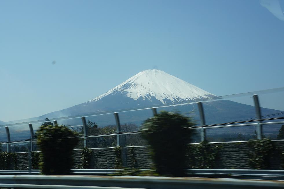 hanaya-fuji-DSC07199s.jpg