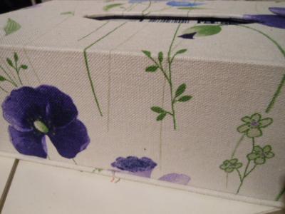 tissuebox wh 1