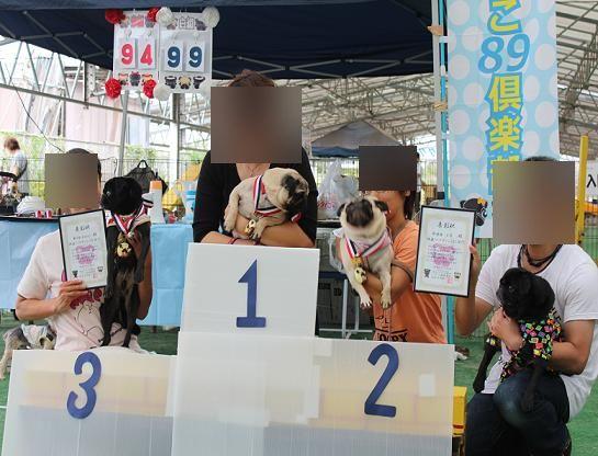 karintou20131112-2.jpg