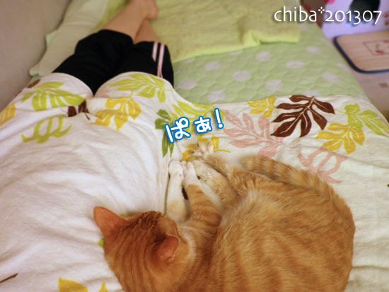chiba13-07-115.jpg