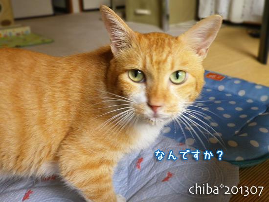 chiba13-07-124.jpg