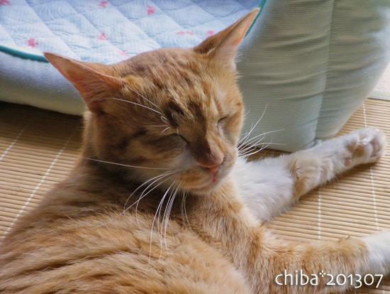 chiba13-07-55.jpg