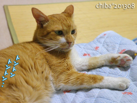 chiba13-08-02.jpg