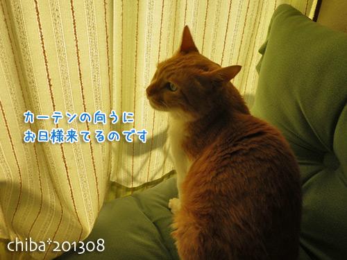 chiba13-08-103s.jpg