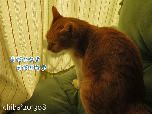 chiba13-08-105s.jpg