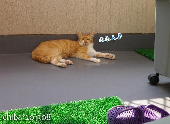 chiba13-08-108.jpg
