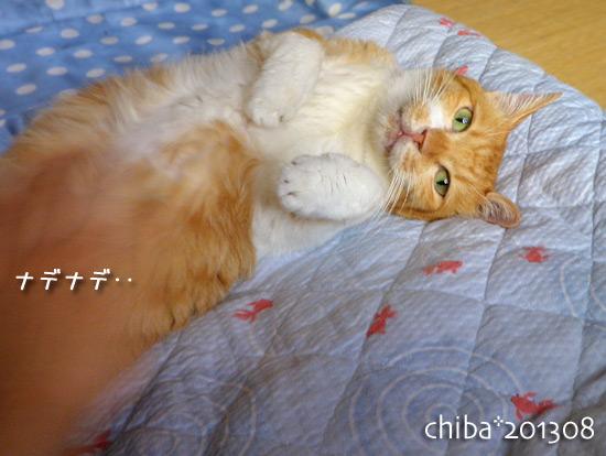 chiba13-08-125.jpg