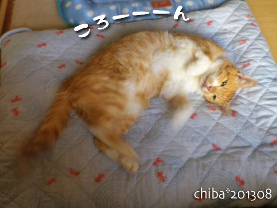 chiba13-08-129.jpg