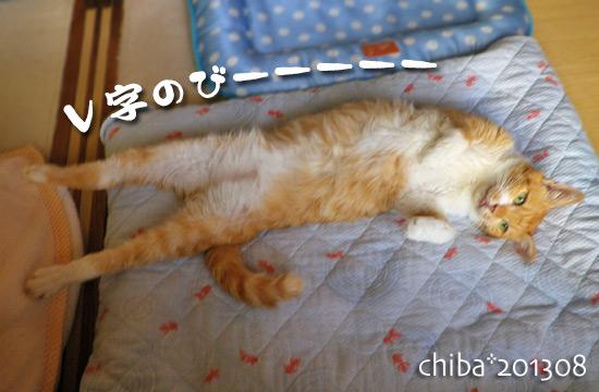 chiba13-08-131.jpg