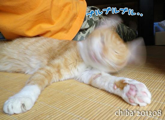 chiba13-08-148.jpg