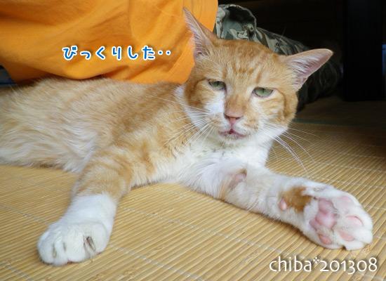 chiba13-08-149.jpg