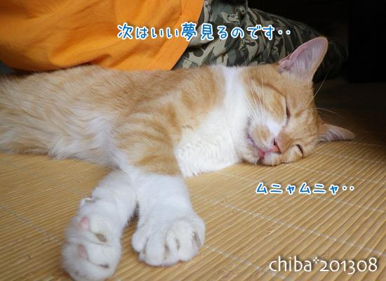 chiba13-08-152.jpg