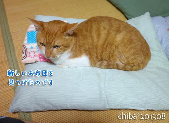 chiba13-08-156.jpg