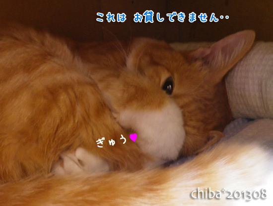 chiba13-08-159.jpg