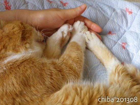 chiba13-08-20.jpg