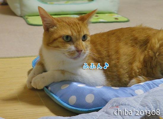 chiba13-08-38.jpg