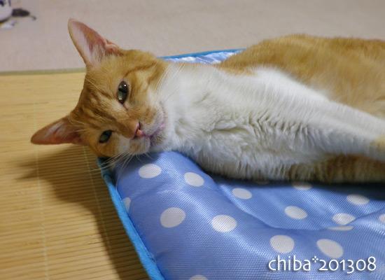 chiba13-08-47.jpg
