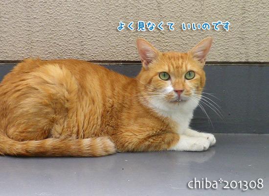 chiba13-08-60.jpg