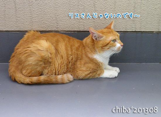 chiba13-08-62.jpg