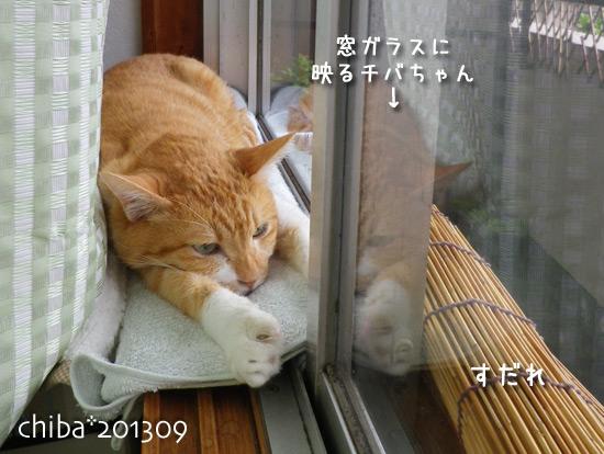 chiba13-09-103.jpg