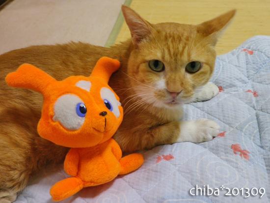 chiba13-09-161.jpg