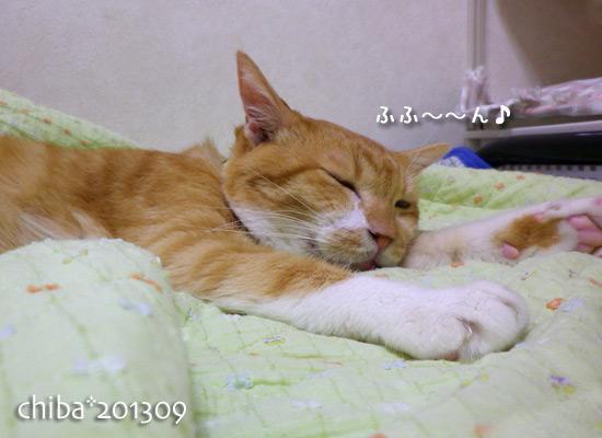 chiba13-09-195.jpg