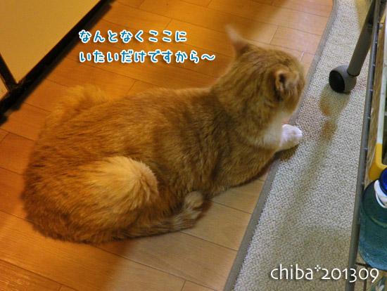 chiba13-09-65.jpg