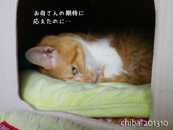 chiba13-10-108.jpg