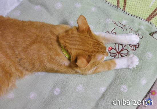 chiba13-11-56.jpg