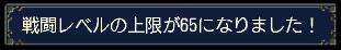 1007007.jpg