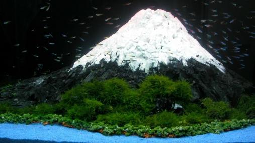アクアリウムフェアin Akasaka Sacas 2013-11-02- (34)