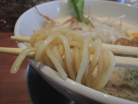 豚だしらぁ麺(中太麺)の麺