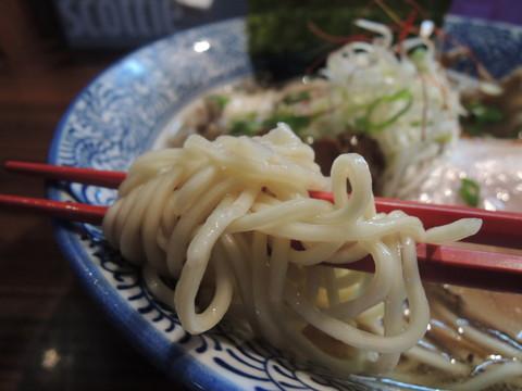 舞茸踊る鶏湯そば~牡蠣のコンフィ添え~の麺