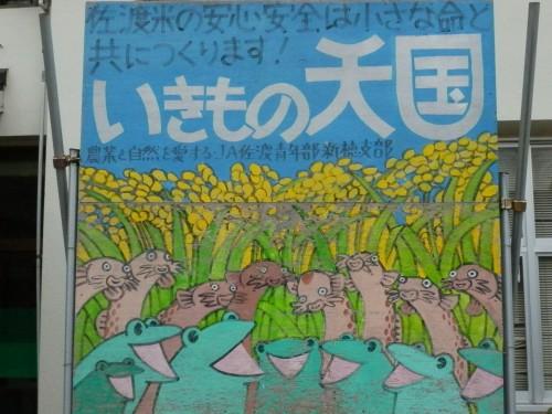 看板カエル#2