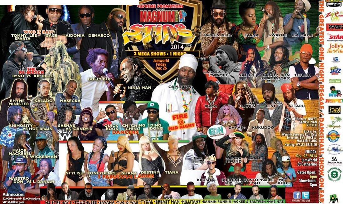 Sting Jamaica 2014 Reggae