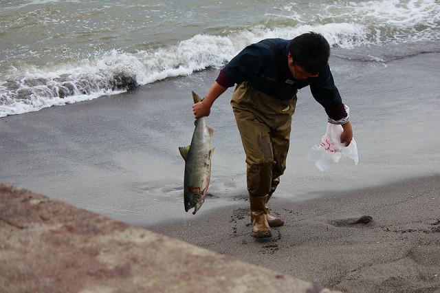 鮭釣り (2)
