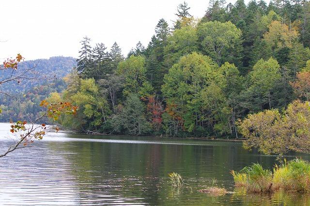 チミケップ湖 038