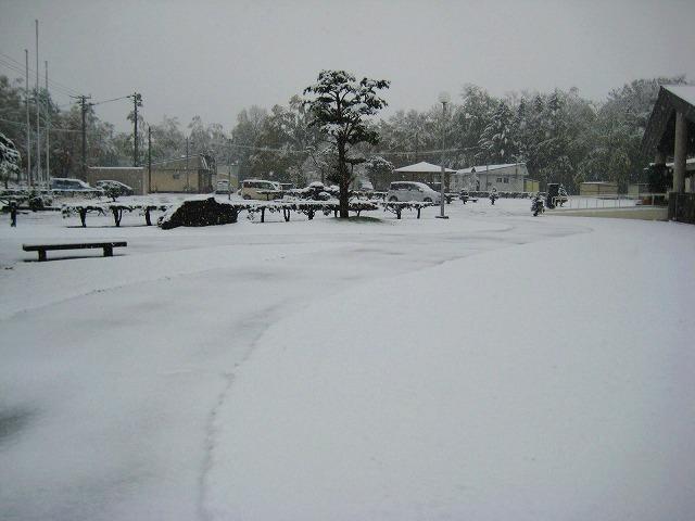 初雪 012
