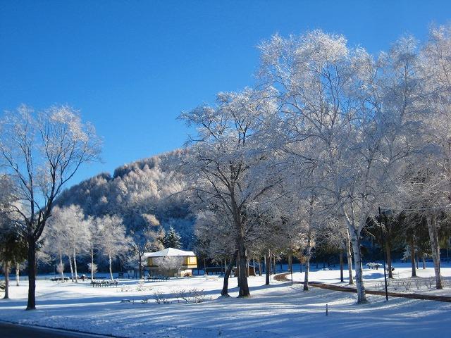 雪景色 031
