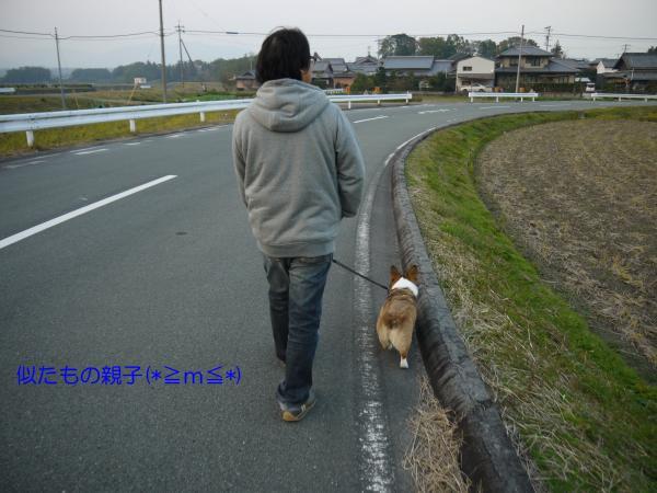 P1030438_convert_20131118105134.jpg