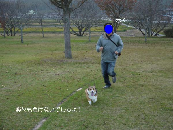 P1030451_convert_20131118105248.jpg