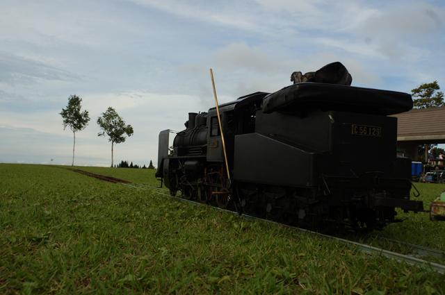 C56 129 芝生の上から青空に向かうように