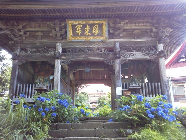 戸狩あじさい寺の立派な山門