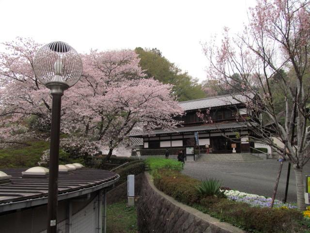 枡形山 011