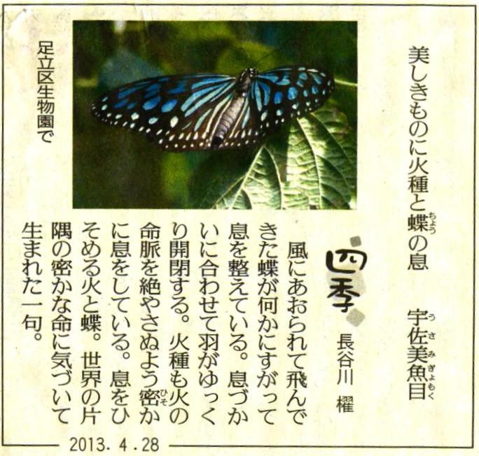 アゲハ 002 Scan_4月-28-2013 チョウチョ俳句