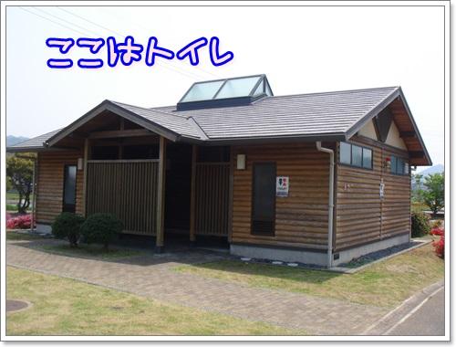 DSC06967.jpg