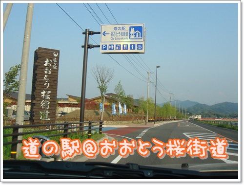 DSC07110.jpg