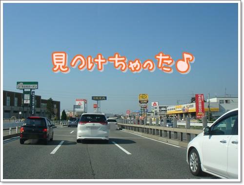 DSC07374.jpg